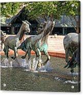 Los Colinas Mustangs 14707 Acrylic Print