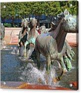 Los Colinas Mustangs 14710 Acrylic Print