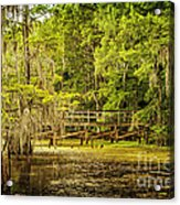 Lost Bridge On Caddo Lake Acrylic Print