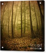 L.ost Acrylic Print