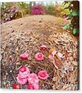 Lost Flowers Acrylic Print