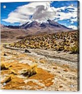 Lost In The Bolivian Desert Framed Acrylic Print