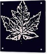 Lost Leaves Acrylic Print