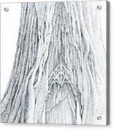 Lothlorien Mallorn Tree Acrylic Print