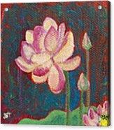 Lotus Dream Acrylic Print