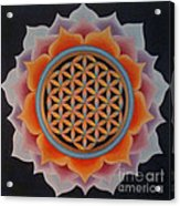 Lotus Of Life Acrylic Print