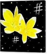 Lotus On Black Acrylic Print