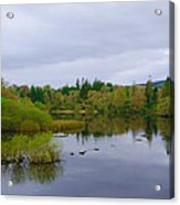 Lough Eske In The Morning Acrylic Print