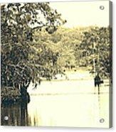 Louisiana Chicot State Park  Acrylic Print