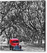 Louisiana Dream Drive Bw Acrylic Print