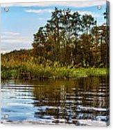 Louisiana Lake Acrylic Print