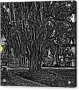 Louisiana Moon Rising Monochrome 2 Acrylic Print
