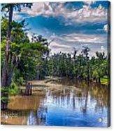 Louisiana Swamp Acrylic Print by Tammy Smith