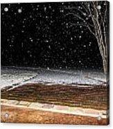 Louisiana Winter Acrylic Print by Hannah Miller