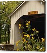 Loux Bridge And Tickseed In September Acrylic Print