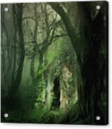 Love Affair With A Forest Acrylic Print