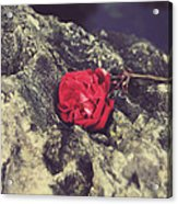 Love And Hard Times Acrylic Print by Laurie Search