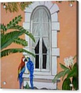 Love At First Peck Acrylic Print