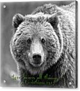 Love Bears All Things ... Acrylic Print