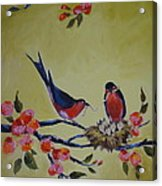 Love Birds Nesting Acrylic Print by Kelley Smith