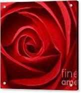 Love Curves Acrylic Print