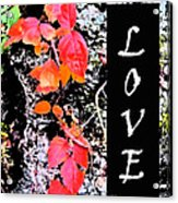 Love Fall White Edition Acrylic Print