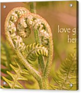 Love Grows Here Acrylic Print