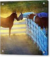 Love In Kentucky Acrylic Print