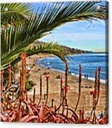 Love In Laguna Beach By Diana Sainz Acrylic Print
