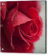 Love Is A Canvas Acrylic Print