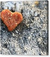 Love Is All Around Acrylic Print