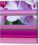 Love Thy Neighbor - Petunias And Verse Acrylic Print