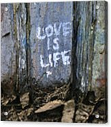 Love Is Life Acrylic Print
