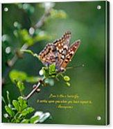 Love Is Like A Butterfly Acrylic Print