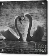 Love Is.. Acrylic Print