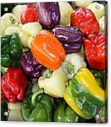 Love My Peppers Acrylic Print