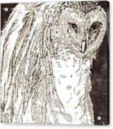 Love Owl Acrylic Print