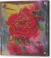 Love Red Acrylic Print
