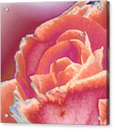 Love Story - Forever Acrylic Print by Wendy J St Christopher