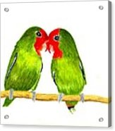 Lovebirds Acrylic Print