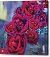 Loveflower Roses Acrylic Print