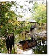 Lovejoy Covered Bridge And Moose Acrylic Print