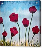 Lovely Poppies Acrylic Print