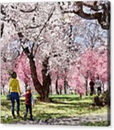 Lovely Spring Day For A Walk Acrylic Print