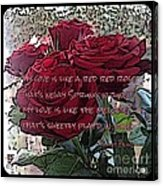 Lover's Roses Acrylic Print