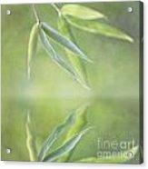 Loving Greens I Acrylic Print