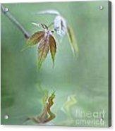 Loving Greens II Acrylic Print