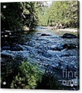 Loving She - Nature  Acrylic Print by Tim Rice