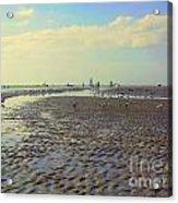 Low Tide At Siesta Beach Acrylic Print