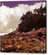 Low Tide Shoreline Closeup With Clouds Acrylic Print